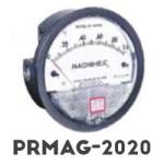 PRMAG-2020