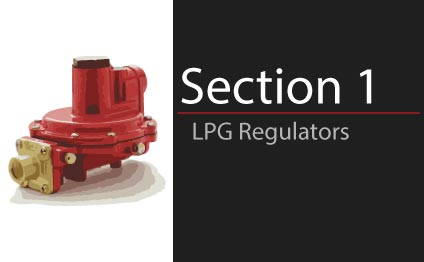 Section 01